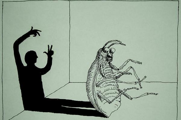 """""""DÖNÜŞÜM: KAFKA'NIN BÖCEĞİNE Mİ, SONSUZ BİR UFKA DOĞRU MU?"""""""